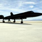 Blackbird on the runway