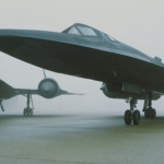 Blackbirds in the fog
